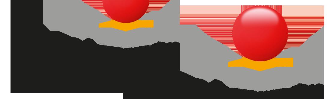 IAC Unternehmensberatung GmbH Logo